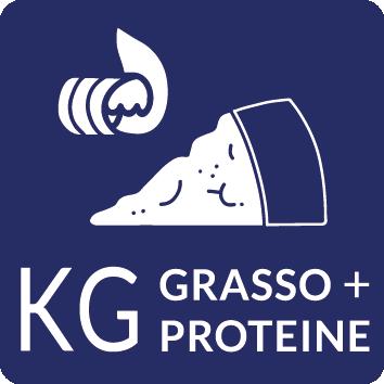 KG Gra + Pro